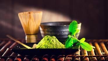Matcha Tee im Sport, Proteine & Oxalsäure