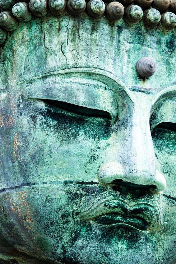 Buddhismus Bücher