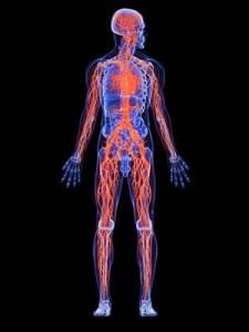 Krankheit gesunder Organismus