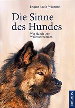 Die Sinne des Hundes: Wie Hunde ihre Welt wahrnehmen